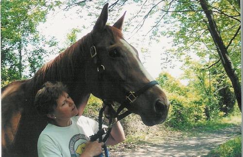 Horses - Izzy